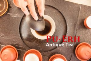 puerh-with-title